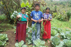 Guatemala success story