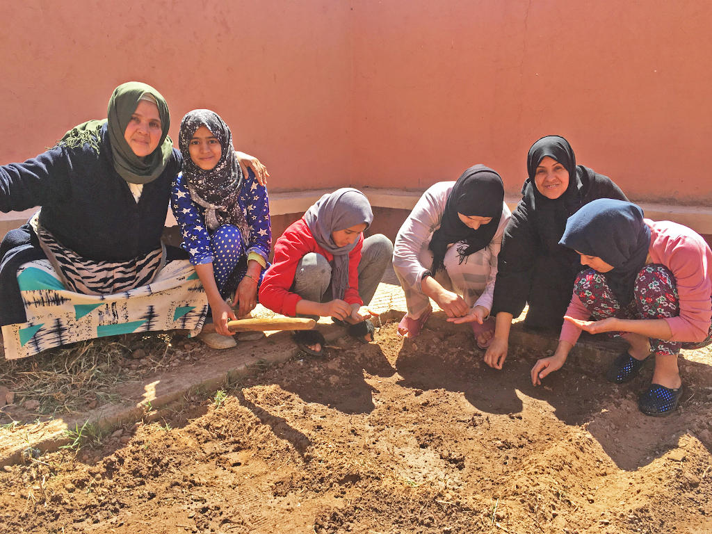Planting at the dar taliba