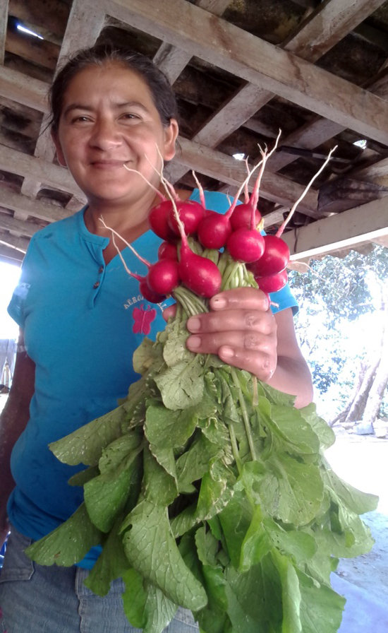Woman with Radishes, near Santa Rita
